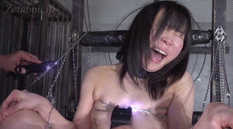 PAIN GATE 辛裸蛮障の画像